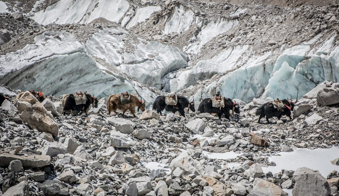 Trekking into thin air in post-quake Nepal