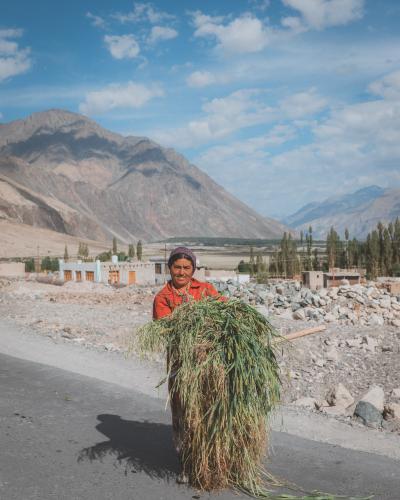 Ladakh India-111