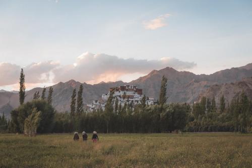 Ladakh India-29
